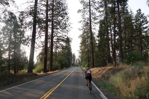 Helen riding through pines