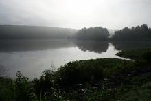 Foggy creek just after dawn.